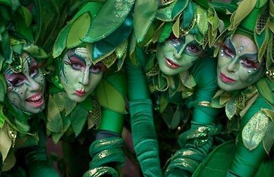 Groene Fee en Bomen | Artiest huren bij Swinging.nl