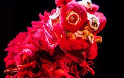 Chinese Leeuwendans boeken | Swinging.nl